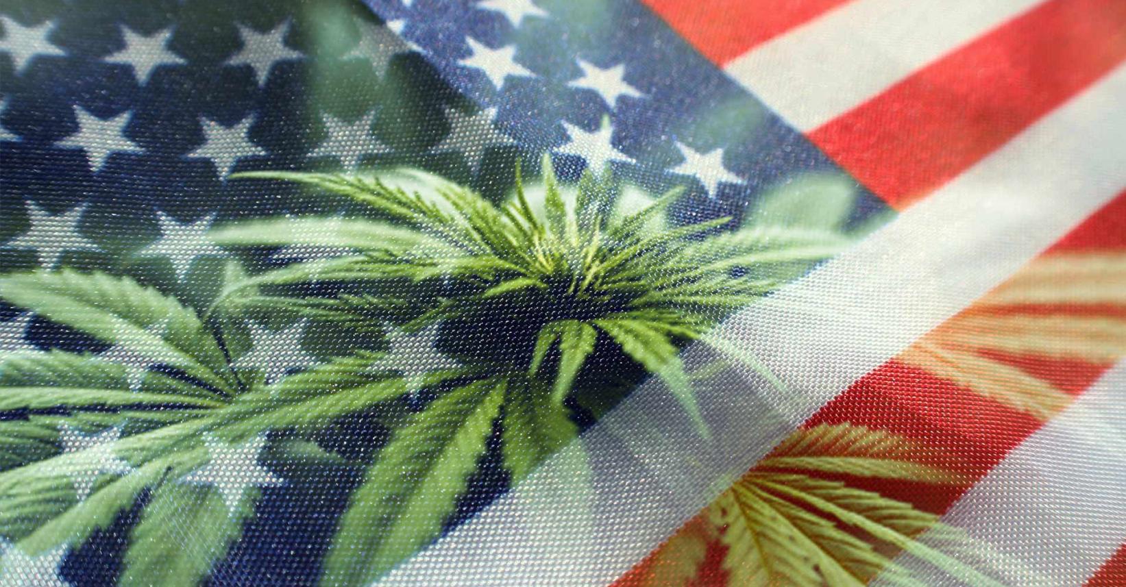 ミシガン州でついに合法的な嗜好用大麻の販売が開始!
