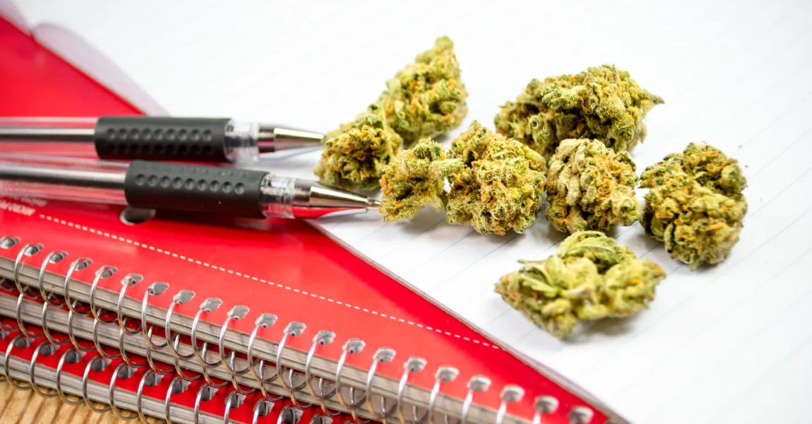 大麻を学びたい警察官向けにオンライン大麻教育コースが発表!