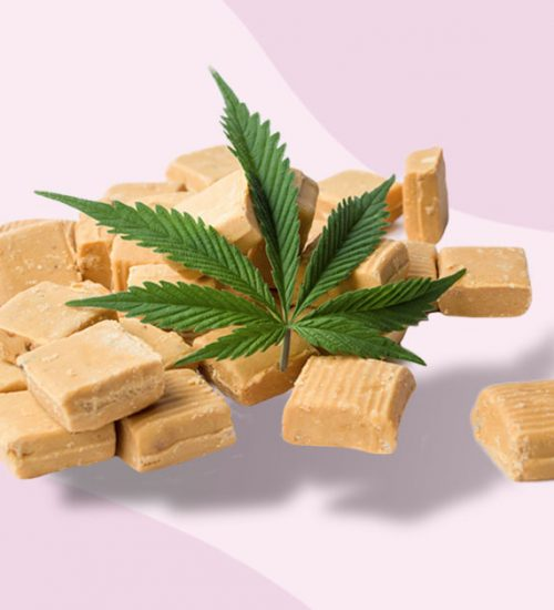 ハワイ 食用大麻