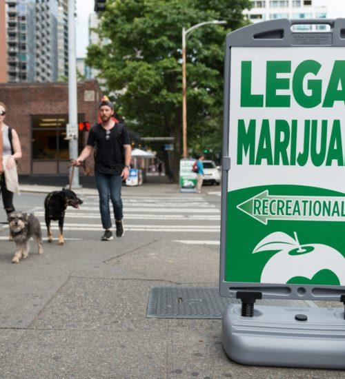 大麻販売店