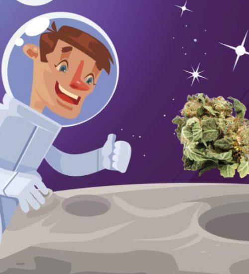 大麻 宇宙