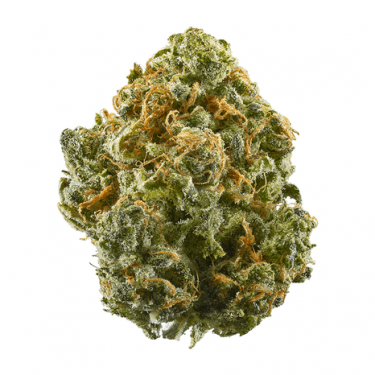 https___s3-us-west-2.amazonaws.com_leafly-images_flower-images_blue-dream (2)
