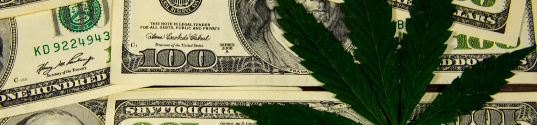 州大麻プログラム