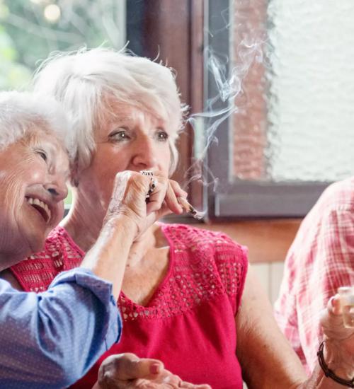 高齢者 医療用大麻