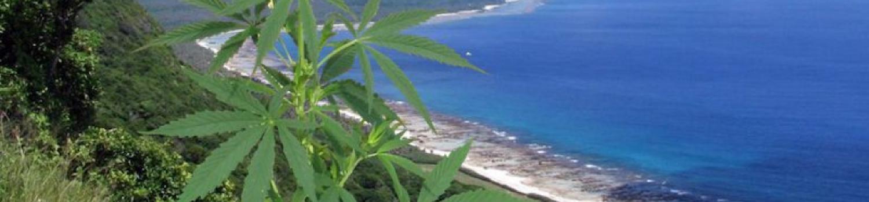 グアム 大麻 合法化