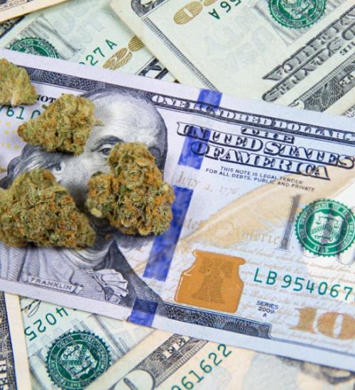 マサチューセッツ州 大麻売上