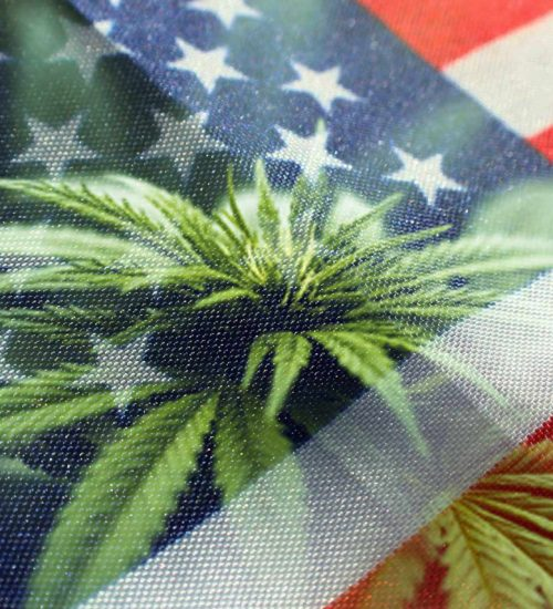 ミシガン州 大麻合法化