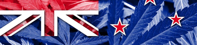 ニュージーランド 大麻