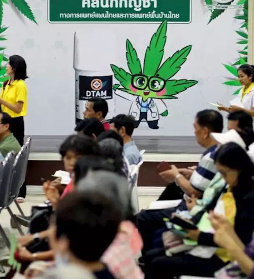 タイ 大麻クリニック