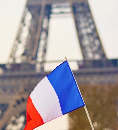 フランス 医療大麻プログラム
